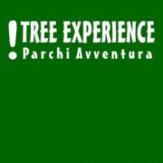 Tree Experience